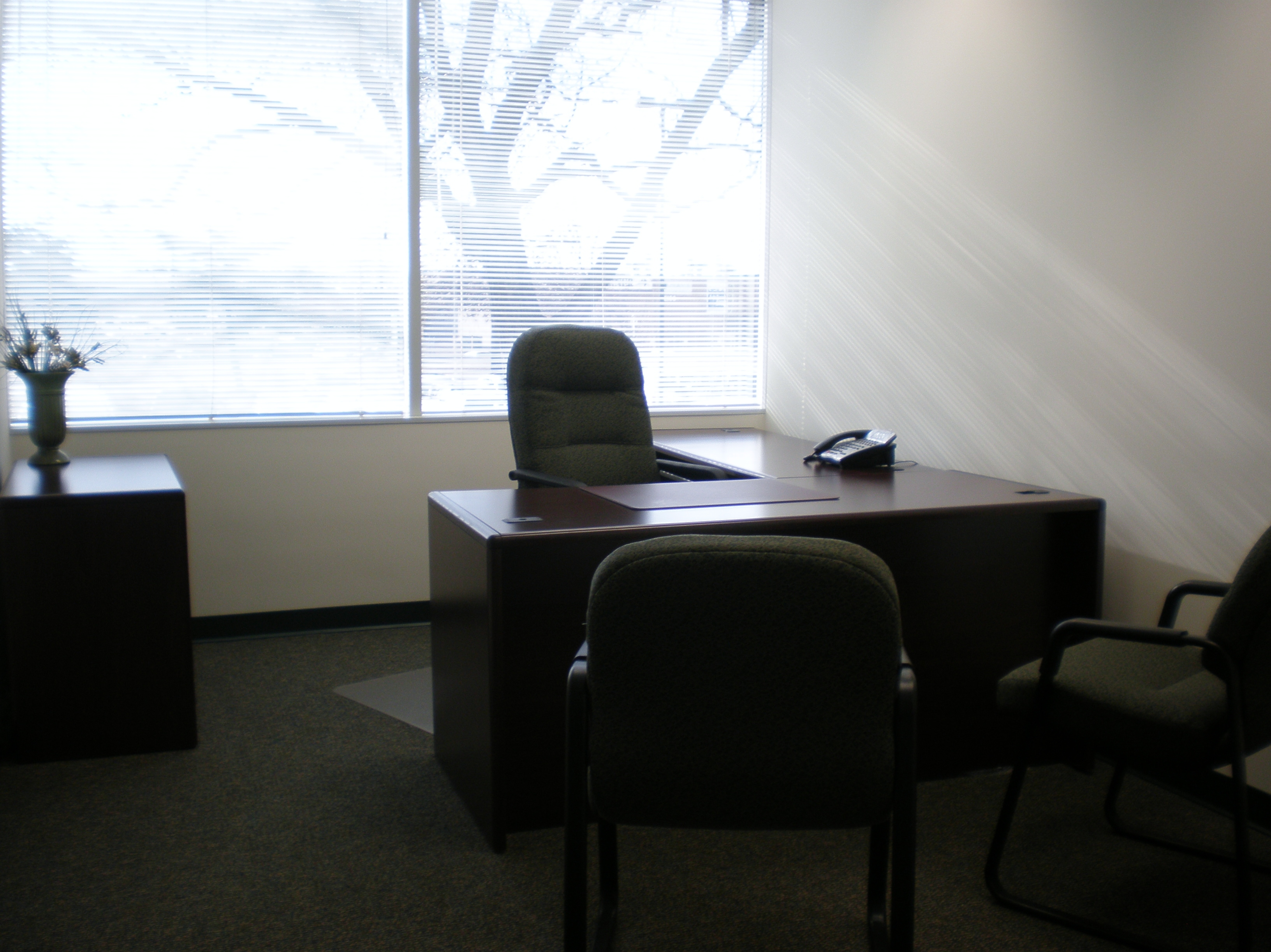 person office. One-Person Office Person
